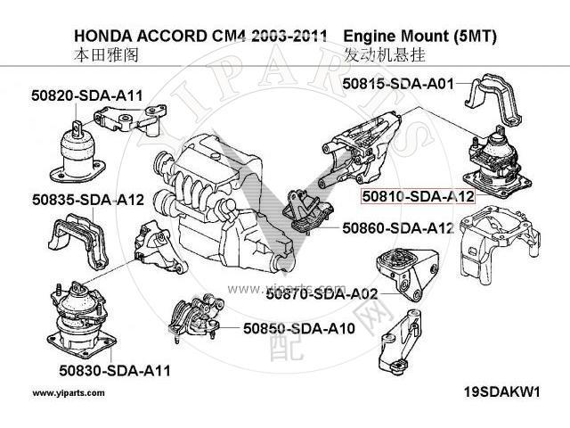 Engine Mount 50810-SDA-A12