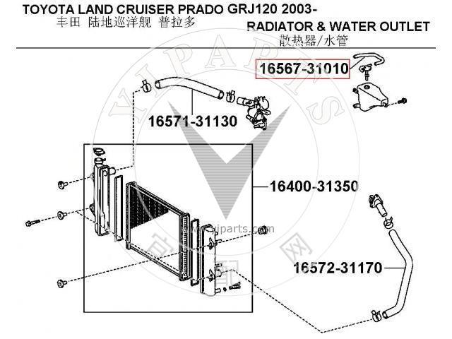 Manguera de radiador 16567-31010